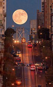 San Francisco Moon student exchange